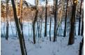 Parduodamas sklypas prie ežero Žičkų k., 2.87 ha